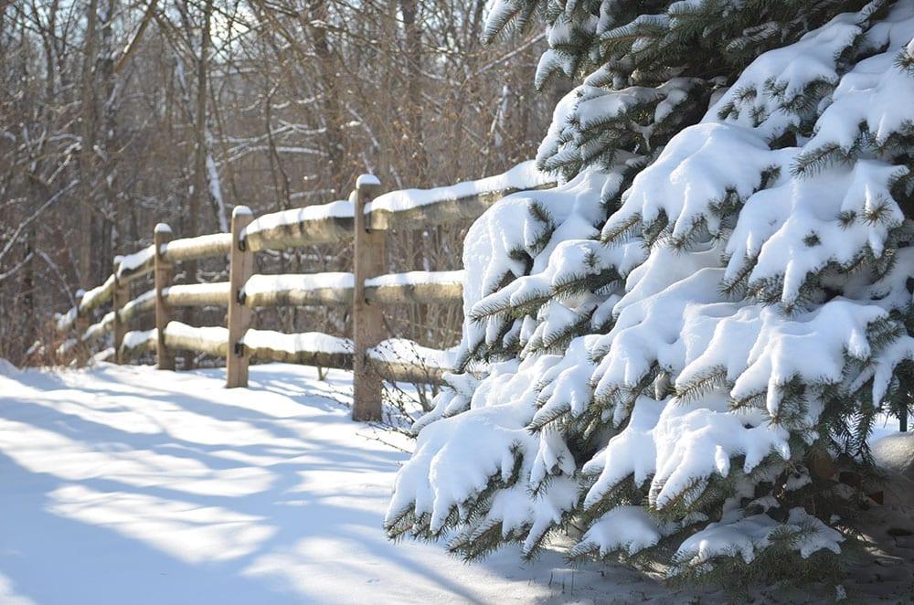 Ohio Winter Snowy Scene
