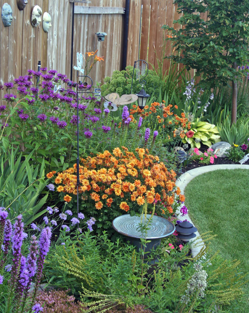 Perennial flowers and plants in the garden from Strader's garden center